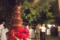 Kakao Melekleri - Galeri (16)