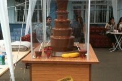 Kakao Melekleri - Galeri (32)