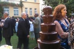 Kakao Melekleri - Galeri (46)